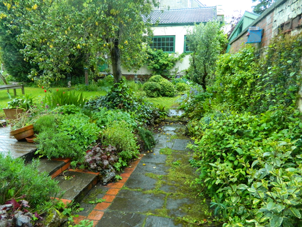 green wet garden view